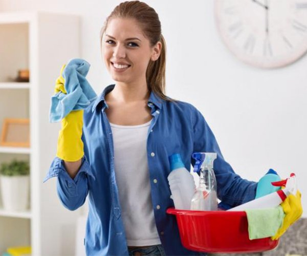 alphamaids cleaning services in florida