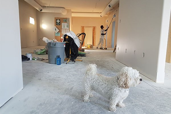 1. Safety – Safety must be the number one priority when doing post-construction cleaning because construction areas can pose danger to anyone. A construction site will have a lot of debris, left-over materials such as nails, screws, metal parts, and wood that can cause injury or accident.  A professional cleaning company like Alphamaids will perform a thorough cleaning of the remodeled area and will make sure to remove all the debris and left-over materials in the construction site. This will help guarantee the safety of the area. 2. Extra Time - If your home has just been renovated or remodeled, you will have a lot of tasks that need to be done. By assigning the post-construction cleaning to a professional cleaning company, you will be able to focus on other important matters like taking care of the business and spending quality time with your family. Alphamaids will be able to handle the post-construction cleaning and make sure that your space will be in excellent move-in condition as soon as possible.   3. Fast Cleaning - Post construction cleaning may take a full day or entire weekend if you will do it on your own. With a professional cleaning company like Alphamaids, our highly trained and experienced cleaning staff will make sure to get the job done faster because we know how to do the cleaning properly. We can help you save time and money by getting things done quicker. We will do a detailed and timely cleaning so you can continue with your work sooner than expected.   4. Proper Waste Disposal - A construction site will have a lot of waste, and it's important that these are taken care of properly. You cannot just simply throw any left-over materials or debris in the trash can. You must observe the local government's rules and regulations to avoid having any fines for dumping. A professional cleaning company like Alphamaids knows how to properly dispose of the waste materials from a construction site.  5. Save Money - If you think that you can save money by op